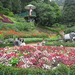 Botanical Gardens