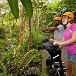 World of wonder on a Segway through the rain forest