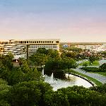 Hilton Orlando Lake Buena Vista