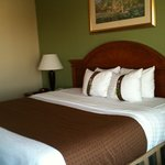 Foto van Holiday Inn Shreveport -I-20-Downtown