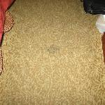 More carpet stains in front of the bed