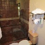 Bathroom with rain head, walk-in shower