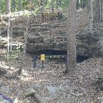  one side of Wolf Cave