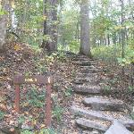  Trail 3 Stairs