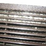  Mold growth on A/C filter