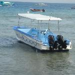 New Dive Boat with Twin Outboards