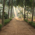 Photo of Nc Gardens &amp; Beach Resort Malappuram