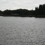  Schelde River