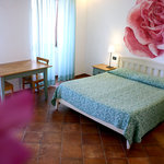 B&amp;B and Apartments Da Baranin
