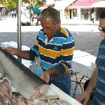  Selecting swordfish steaks for dinner with Luigi the chef
