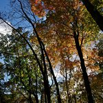 ‪Kettle Moraine State Forest‬