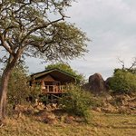 Sanctuary Kusini, Serengeti