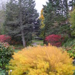 Klehm Arboretum & Botanic Garden