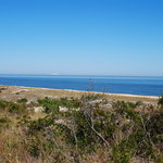 Cape Henlopen State Park