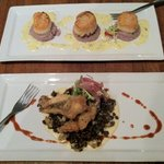 Pan seared scallops with purple potato puree & lemon thyme butter, & Tempura hogfish with parsni