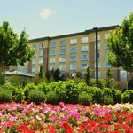 Hilton Garden Inn Denver South/Meridian