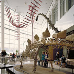 Science Museum of Minnesota
