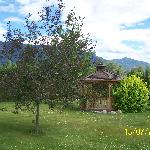 Bavarian Orchard Motel의 사진
