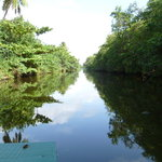 Muthurajawela Marsh