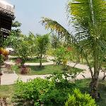 Gardens in front of the bungalows-Mabul beach resort