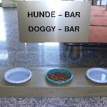  Even dogs catered for