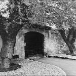 The entrance between two century old mulberry trees