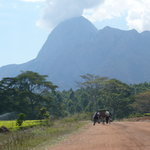 Mount Mulanje