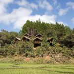 Saha Forest View of the lodges