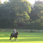 Croxteth Park Riding Centre