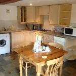 Kitchen in Japonica cottage