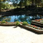 Eureka Springs Gardens