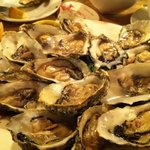 The oysters...