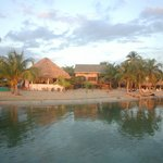 Photo of Green Parrot Beach Houses Placencia