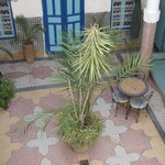 Riad Arahanta