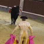  What a Matador
