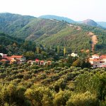 Natur-Med Thermal Springs And Health Resort