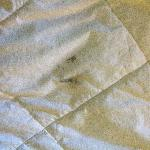 If you are not putting the comforter in a duvet, then make sure it is clean!