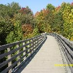 One of about 40 old railroad bridges that you cross on the Creeper Trail.