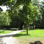  One of the nearby parks