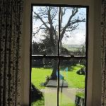 The view from the window in the Garden Room