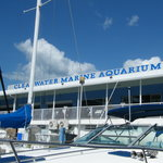 Clearwater Marine Aquarium
