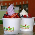 Twirl Frozen Yogurt