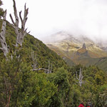 Walking towards Mt Taranaki