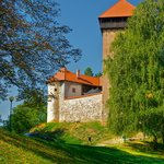  Dubovac castle
