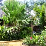 Photo of Afrikhaya Guest House Saint Lucia