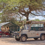 The dining tent & safari vehicle