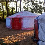 Foto van Sopley Lake Yurt Camp