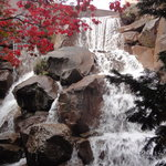 Waterfall Garden Park