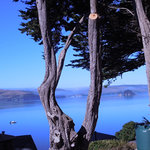Inn on Tomales Bay