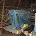 Lupa Masa Rainforest Camp